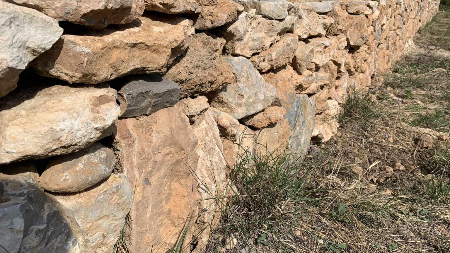 Barraca Rossellet (Barraca entre Vinyes) mur de pedra seca.