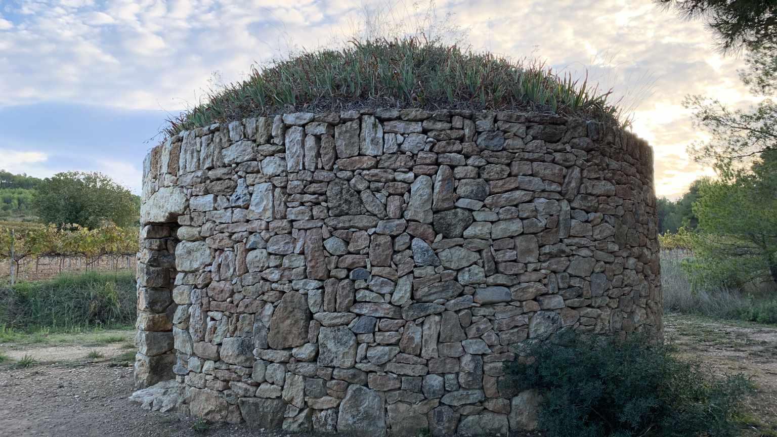 Exterior Barraca Pi Gros (Barraca entre Vinyes).