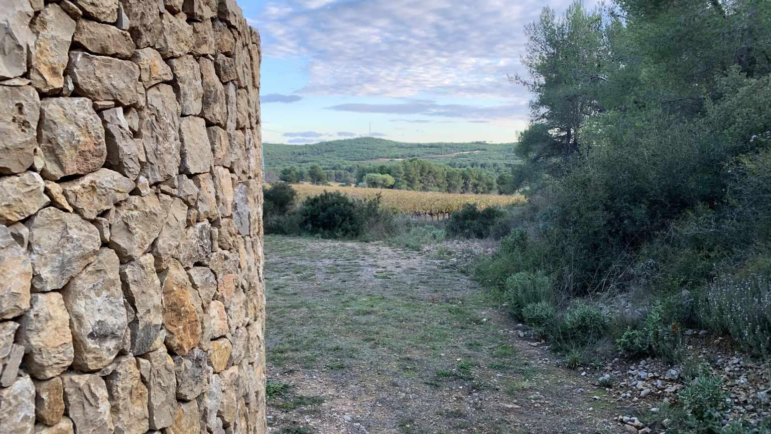 Vistes des de la Barraca Rossellet (Barraca entre Vinyes)