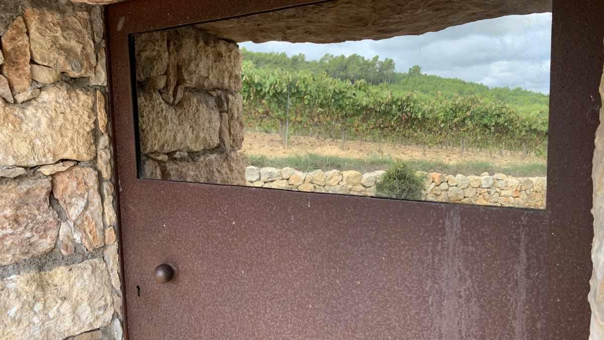 barraca entre vinyes - barraca el forn